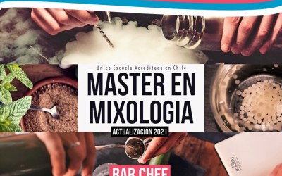MASTER EN MIXOLOGIA, Bar Chef